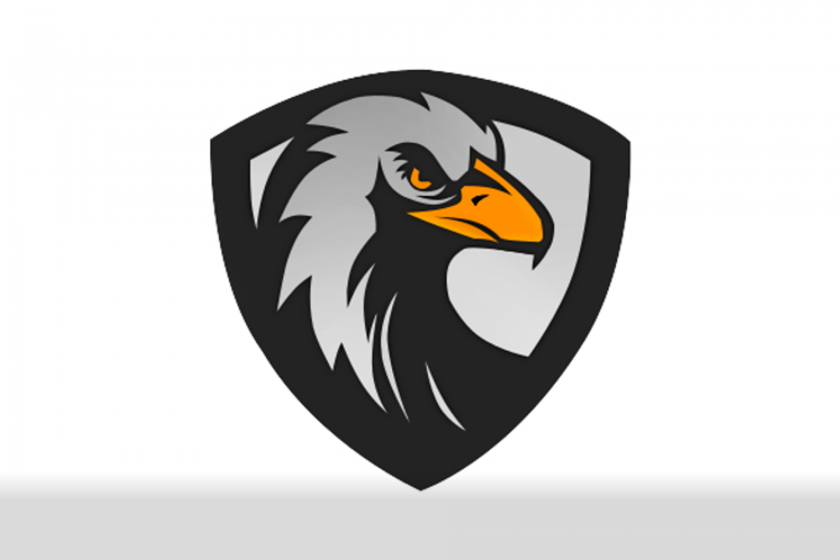 black eagles gaming