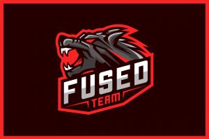 fused team