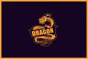 dragon polska