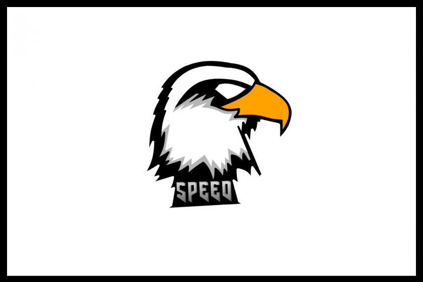 speed e-sports