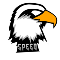 speed e-sports