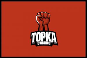 topka gaming