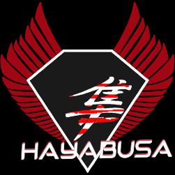 team hayabusa